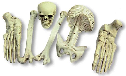 Small Bag With Skeleton Bone 6 Pieces Bone Parts For Halloween Deco Horror Shop Com