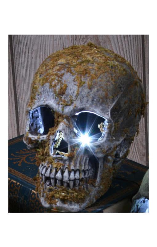 strobe light skull moss a mossy skull with flashing light effect horror. Black Bedroom Furniture Sets. Home Design Ideas