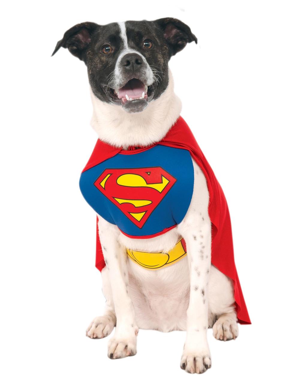 superman hunde kost m m f r fasching horror. Black Bedroom Furniture Sets. Home Design Ideas